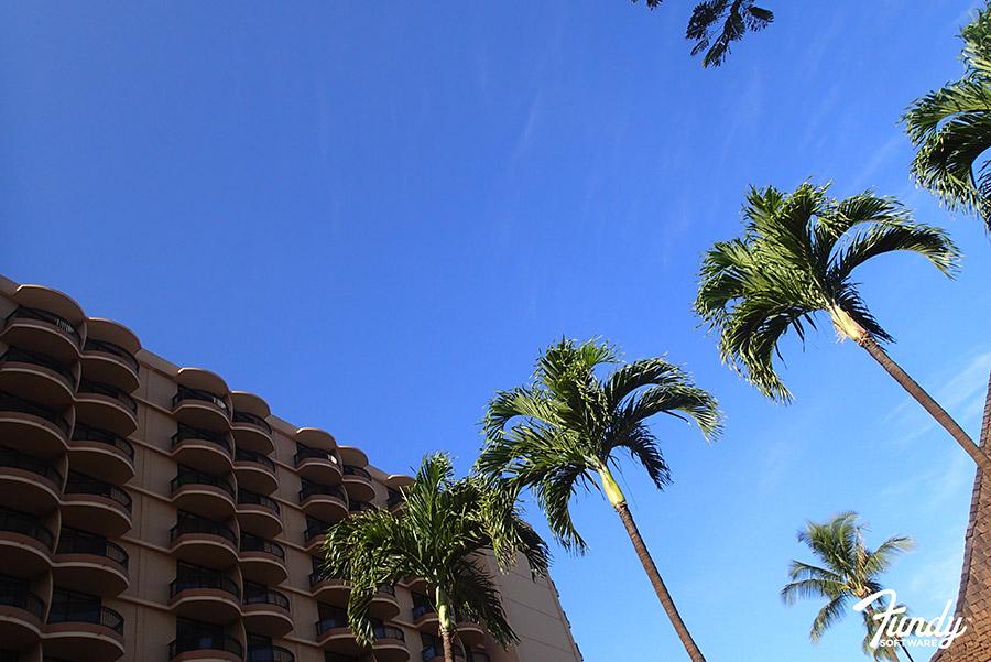 Hawaii1-004